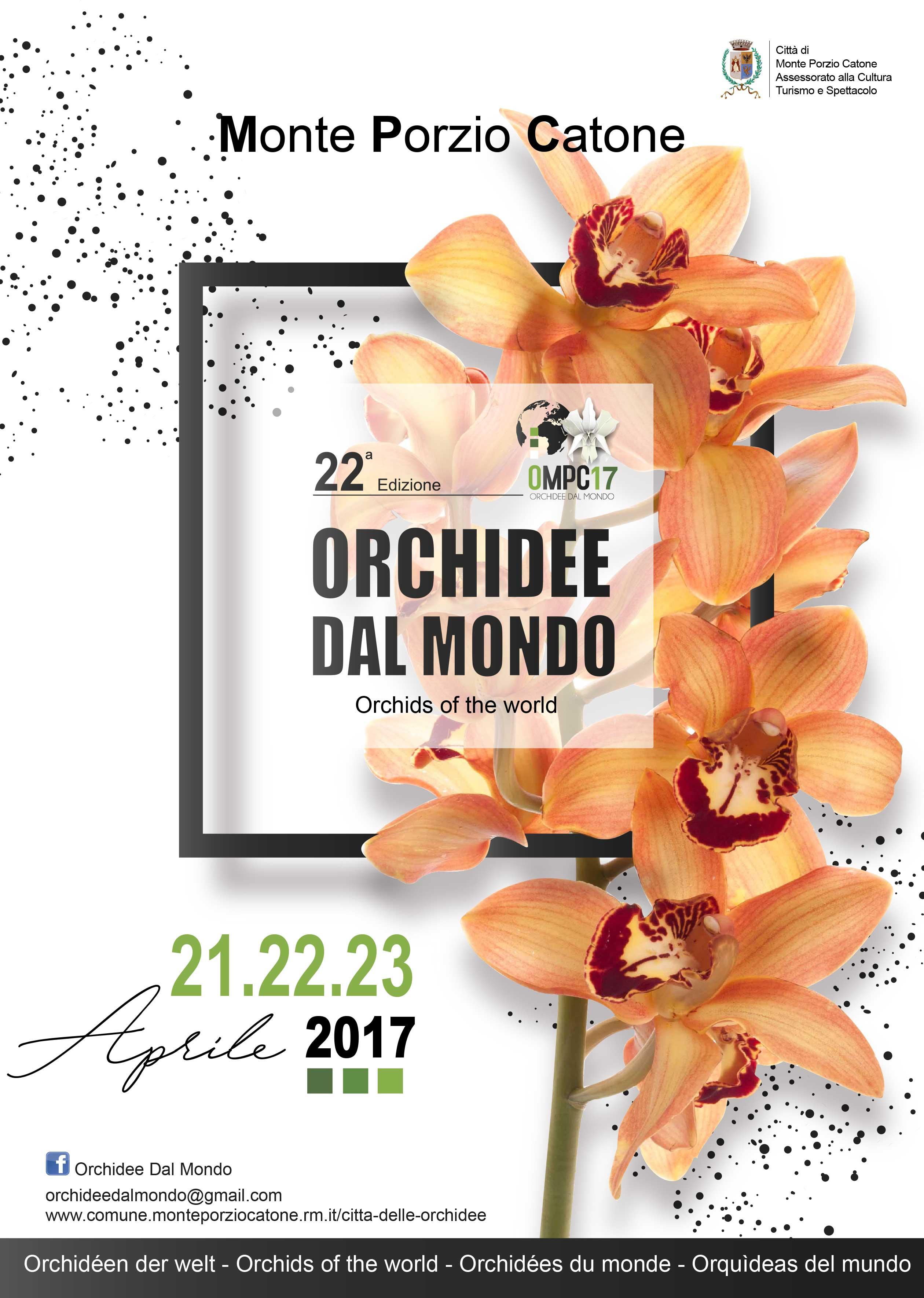 mostra internazionale orchidee 2017 monte porzio catone il tinello